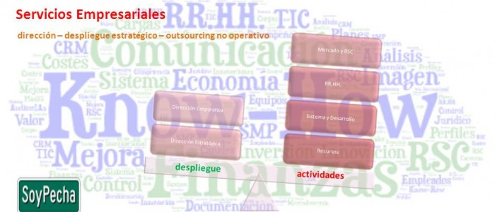 Out-sourcing de Dirección Estratégica y Corporativa